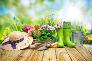 Spring Tips For Your Home and Garden